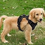 Funkeen® hundsele (svart), inget drag, justerbar, mjukt bröstskydd, reflekterande, andas, lätt hundsele för små, medelstora o