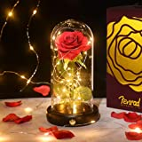Rosas Encantada Bella y la Bestia Eterna Flor, Rosa de Seda Luz 20 LED Elegante Cúpula de Cristal con Base Pino, Regalo para