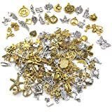 Nsiwem Breloques 200 Pièces Breloques pour la Confection de Bijoux Charms Pendentifs Accessoires de Bracelet pour Faire des B