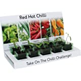 Red Hot Chilli Grow kit 100% Recyclable 5 Varieties to Grow Your Own Kit from Seed Eco Gifts Made with 100% Recyclable…