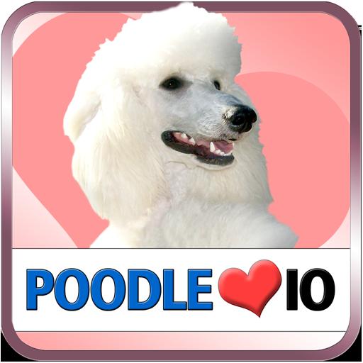 Poodle IO