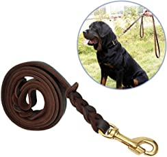 W9 Pet Braided Dog Training Lead Rope Leash with Brass Hook (Width-1Cm)