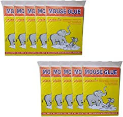 SET of 10 pieces -(16 x 11)- Catch Mouse/Rat Glue Traps, 10 piece Mouse Insect Rodent Lizard Trap Rat Catcher Adhesive Sticky Glue Pad for rats/lizards/ cockroaches/ ants/ mouse/ rodents (Pack of 6)| mice trap glue | mouse repellent for home | mouse trap for big rats | mouse kill glue| mouse kill trap | Mouse/ Rat Bond Traps||