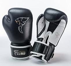 Carbon Claw Sparring Glove 10oz CC-096