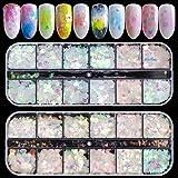 EBANKU 24 dozen holografische nagel pailletten, Nail Art Glitters vlokken iriserende zeemeermin ultradunne hart vlinder gliml