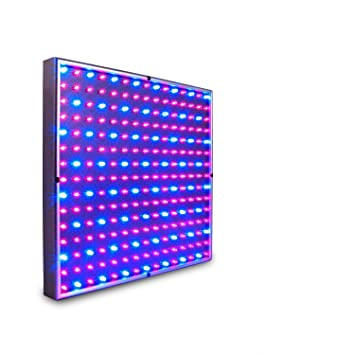 15 watt led grow light red and blue to stimulate maximum growth