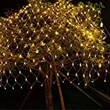 HASTHIP ® LED Net Lights |Mesh Tree-Wrap String Low Voltage for Christmas Garden Outdoor Decorations (144 Light, 2 x 2m…