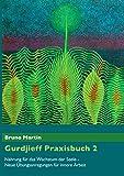 Gurdjieff Praxisbuch 2: Nahrung für das Wachstum der Seele - Neue Übungsanregungen für innere Arbeit
