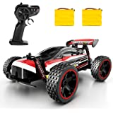 RC Racing Car, 2.4Ghz High Speed Remote Control Car, 1:18 2WD Toy Cars Buggy for Boys & Girls with Two Rechargeable Batteries