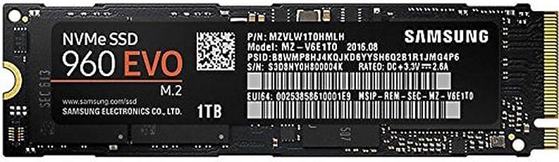 Samsung 960 EVO MZ-V6E1T0BW Interne Solid State Drive (1TB)