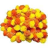 Moira Artificial Marigold Flowers Garland (Orange & Yellow, 1 Set, 5 Ladi)