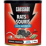 Caussade CARSC150 Rats & Souris - 6 sachets Céréales prêt à l'emploi - Grenier et Charpente | Forte Infestation
