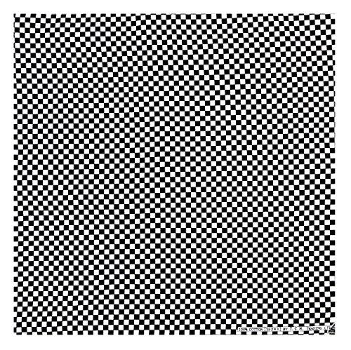 (Tuch Klein Kariert Schwarz Weiß Checkered Flag Flagge Kopftuch Bandana Halstuch Biker Sport Nickituch Kopfbedeckung ca. 51 x 51 cm Einseitig Bedruckt)