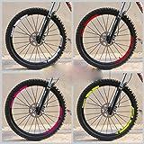 DACCU Juego de 2 Pegatinas para Llantas de Bicicleta de monta/ña para MTB Dh Vinilo Race Dirt calcoman/ías de Repuesto