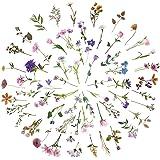 120pcs Stickers Fleurs Plantes Style Autocollants, Tulipes Roses Marguerites Flower Sticker, Auto-adhésif Décoration DIY Cade