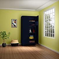 GODREJ INTERIO Storwel Alloy Steel Wardrobe Pacific Blue,2 door