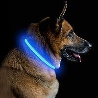 PetIsay Collare di Sicurezza per Cani a Led Ricaricabile Usb Super Luminoso, Collare per Animali Incandescente, Collare…