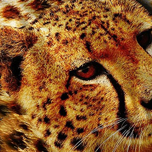 Gepard Natur Tier Intensiv Schau Damen S-2XL Muskelshirt | Wellcoda Marine