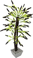 FancyMart Artificial Fern Leaves Bonsai Tree with White Square Pot(Height 60 cms / 24 inchs)