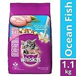 Whiskas Kitten (2-12 Months) Dry Cat Food Food, Ocean Fish, 1.1kg Pack