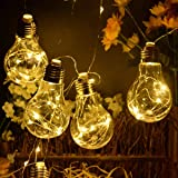 MANSAA® 3.5 MTR 100 LED with 10 Vintage Edison Plastic Bulbs with (2-in-1) USB and 3 AA Battery Box Copper String Light for D