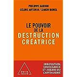 Le Pouvoir de la destruction créatrice (OJ.ECONOMIE)