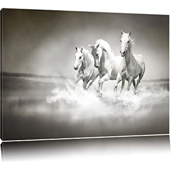 White Horses Running In The Water Canvas Xxl Huge Pictures