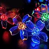 Solar Powered String Lights, 16.5ft 50LED Blossom Solar Garden Fairy Light Waterproof Outdoor Flower String Light for Patio C