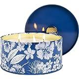 LA Jolie Muse Bougie parfumée Shore Breeze & Sage, Bougie Naturelle pour la Maison et Le Cadeau, 50 Heures de Combustion Long