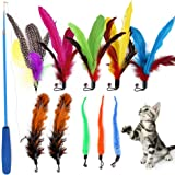 Qpets® Cat Toys - Interactive 11 Piece Toy Set with Retractable Teaser Wands and Feather Worm Toys - Kitten Toys Variety of V