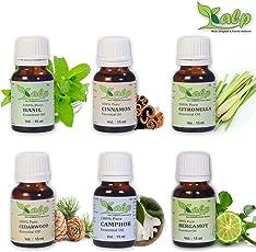 Kalp Pack of 6 essential oils Each 15 ml (Basil + Cinnamon + Citronella + Cedarwood + Camphor + Bergamot) (pack of essential oil) (15ML)