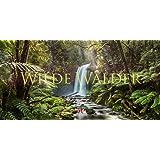 Wilde Wälder 2019, Wandkalender / Panoramakalender im Querformat (66x33 cm) - Landschaftskalender / Naturkalender mit Monatskalendarium