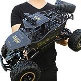 Pleasur Radiostyrd bil, 1:12 4WD stor ökenlastbil, RC elektrisk terrängfordon, vagnsset, batteri med stor kapacitet, enkel hj
