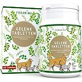 Furanima Gelenktabletten für Hunde - 120 Tabletten mit Grünlippmuschel, MSM, Teufelskralle, Bierhefe und Glucosamin…