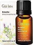 Breathe Essential Oil Blend - Grado terapeutico per sollievo diffusore, congestione e sinusite - Menta piperita…