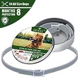 Cane collare antipulci pulci e zecche collare per cani regolabile impermeabile Proteggere per gatti e cani (XL(63.5cm))