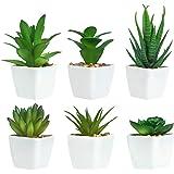 6 Pièces de Plantes Succulentes Artificielles en Pot, Plantes Succulentes Artificielles Vertes, Utilisées pour Le Bureau, Le