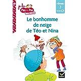 Téo et Nina Fin de CP Niveau 3 - Le bonhomme de neige de Téo et Nina (Je lis pas à pas t. 17)