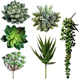 Winlyn 6 Pcs Unpotted Fake Succulents Assorted Faux Succulent in Different Green Artificial Hanging Succulents Textured Faux