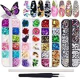 Kalolary Nagel gedroogde bloemen, vlinder nagel glitter pailletten, folie nagel chip glitter, nail art strass met pincet nail