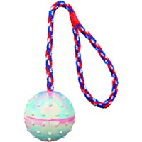 Trixie Ball on a Rope Natural Rubber Dog Toy (Pack of 2) - 30 cm