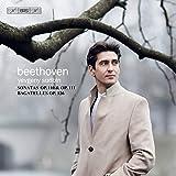 Beethoven: Sonatas/Bagatelles [Yevgeny Sudbin] [Bis: BIS2208]
