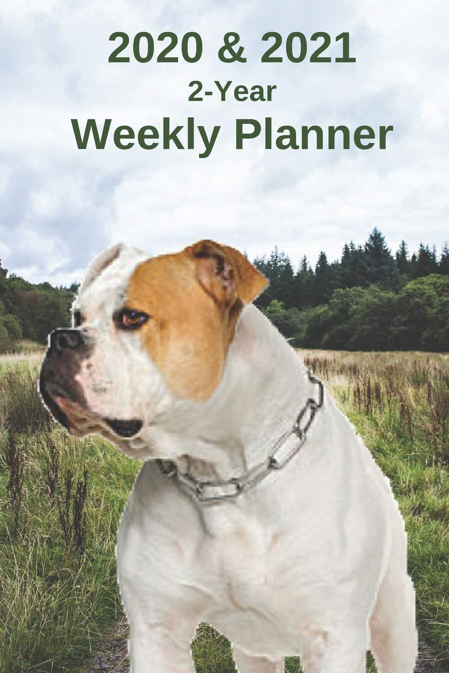 2020 & 2021 Weekly Planner | Two Year Appointment Book Gift | Two-Year Agenda Notebook for American Bulldog Owners…