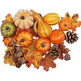 XH-Rain 50 Pièces Citrouille Artificielle, Feuille Dérable, Pommes de pin, Glands, Halloween Décor Thanksgiving Automne Récol