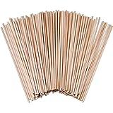 Paquet de 120 batonnet bois tiges de goujon bois de bambou - Tiges longues en bambou, (15cm x 3mm)