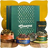 Chaayos Tea Gift Box for Holi   Perfect Festival Gift   Green Tea   Immunity Boosting Green Teas & Infuser   Wellness Gift Ha