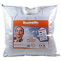 Dunlopillo Lot 2 Oreillers Bleu 60 x 60 cm