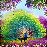 5D DIY Diamond Painting Supplies Crystal Rhinestone Acrylic Paint by Number Kits Embroidery Cross Stitch Arts Craft for Home Wall Decor, Peacock