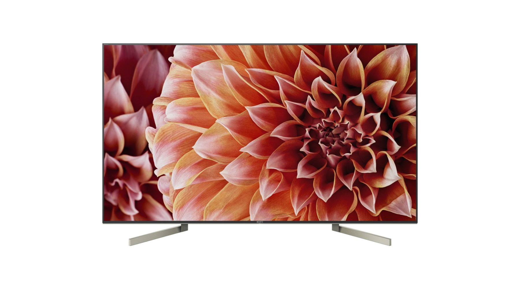 SONY (Premium SDS) Sony KD 49 XF 9005-123 cm (49 Zoll) TV (4K Ultra HD, HDR, Smart TV, Android TV, WLAN, Twin Tuner)