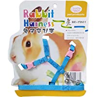 JAINSONS PET PRODUCTS Adjustable Harness with Small Bell for Rabbit, Bunny, Cat, Kitten (Blue and Pink)